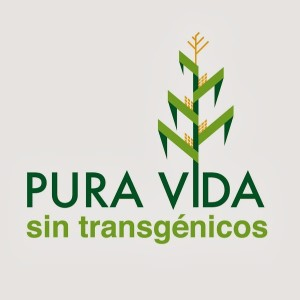 Pura-Vida-sin-Transgenicos-02
